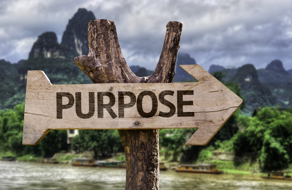 Mission Statements and Purpose